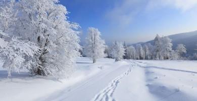 swiezy-snieg